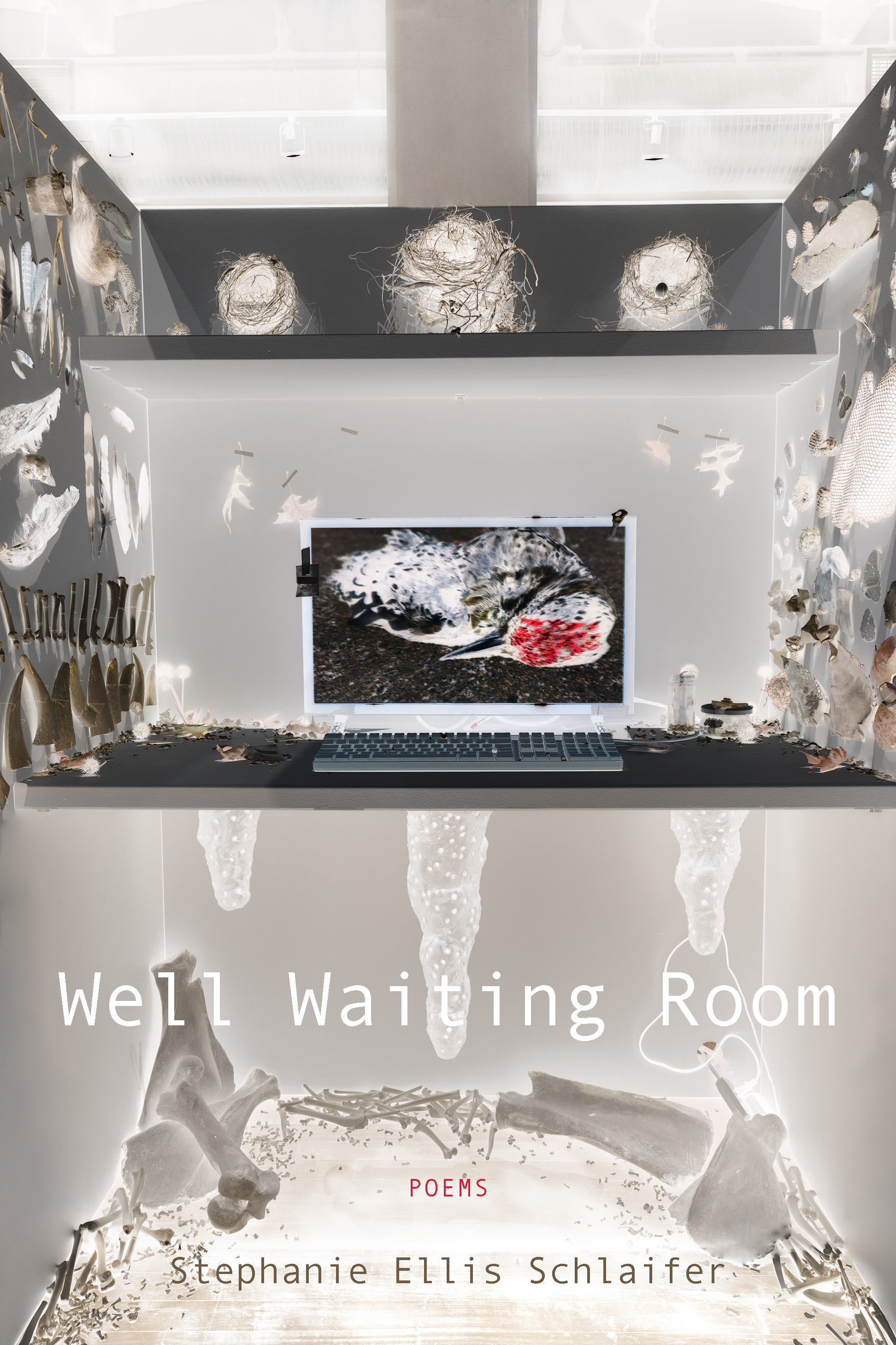Book cover of Well Waiting Room.